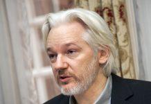 Julain Assange, 2014. Foto: Cancillería del Ecuador, Wikimedia, CC BY-SA 2.0