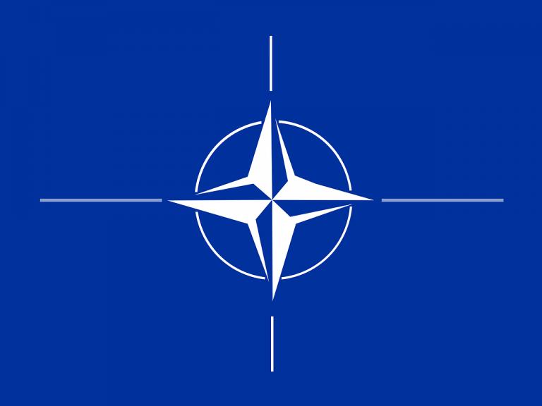 Nato: En olaglig organisation med allvarliga psykologiska problem.