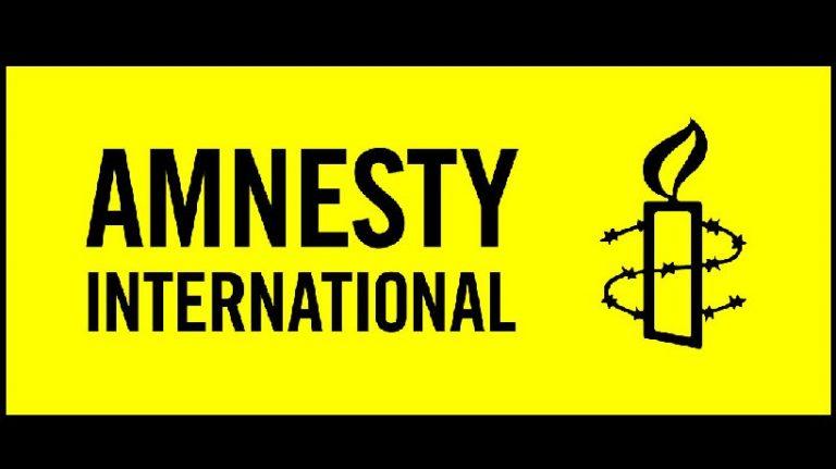 Amnesty anser inte att Julian Assange är en politisk fånge!  Är Amnesty språkrör för USA – visselblåsares fiende?