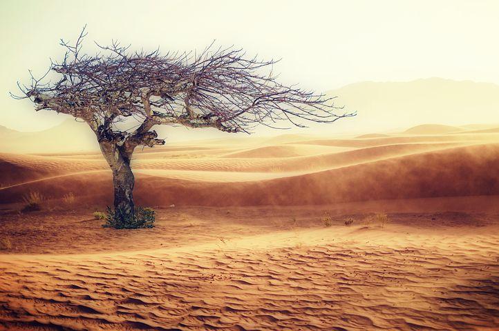Lancet: De starka sambanden mellan klimat och hälsa.