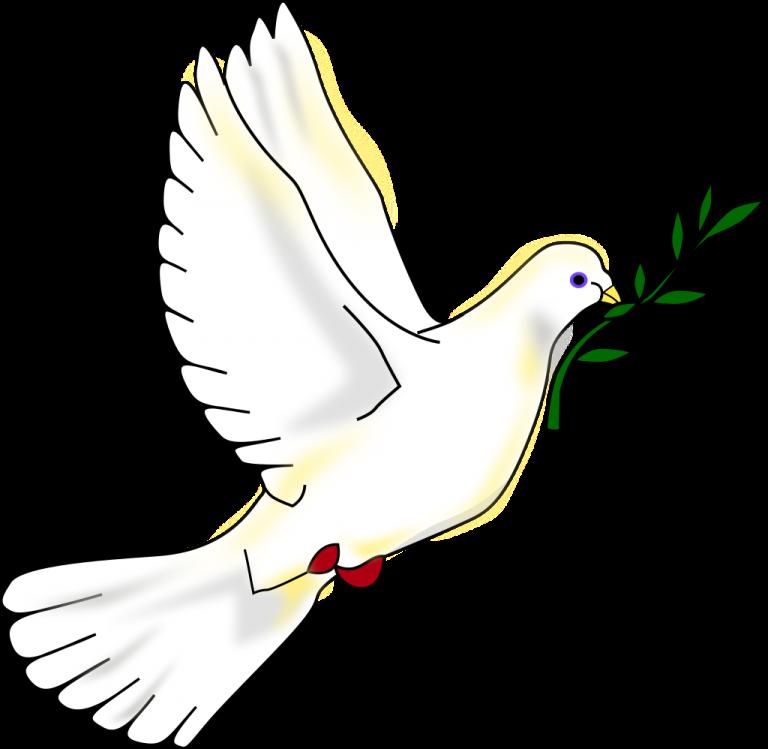 Vad bör fredsrörelsen samlas kring? – reflektioner kring en viss oordning