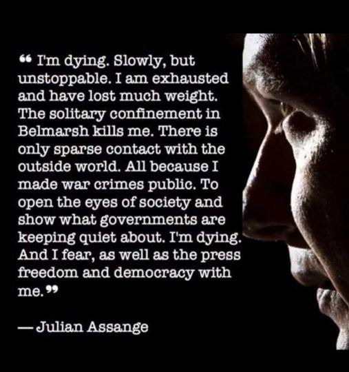 Anna Ardin om Assange – tunn och tveksam story säger experter